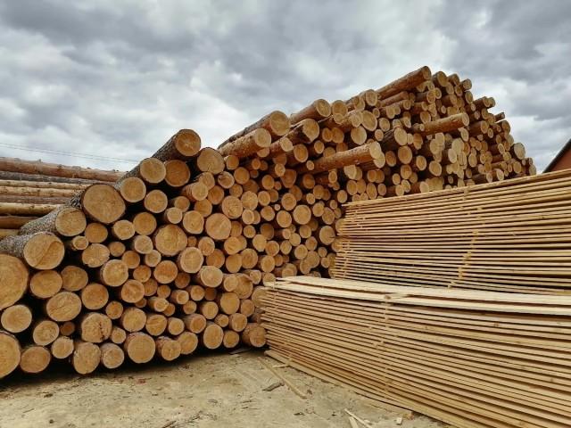 Прекращение роста цен на древесину